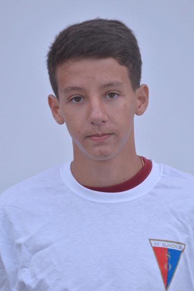 Prekl-Dario-1-profil